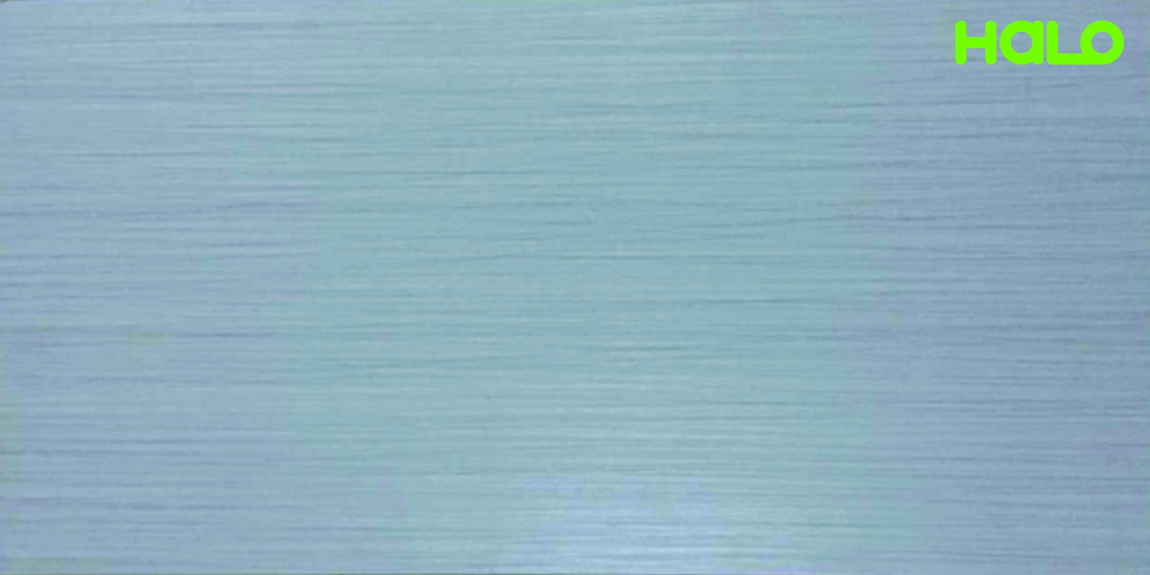 Gạch nhám - EV6315M