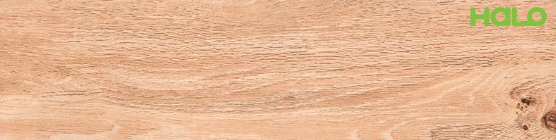 Gạch vân gỗ - LF6912