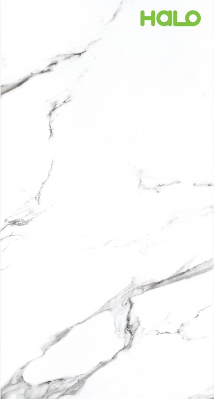 Gạch mỏng - QI918P560M