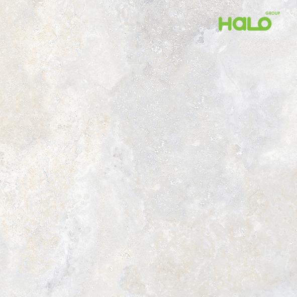 Gạch vi tinh - RG8701