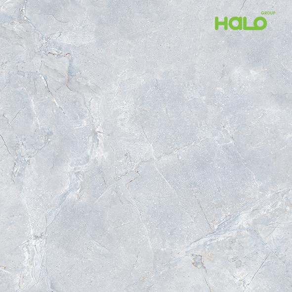 Gạch vi tinh - RG8703