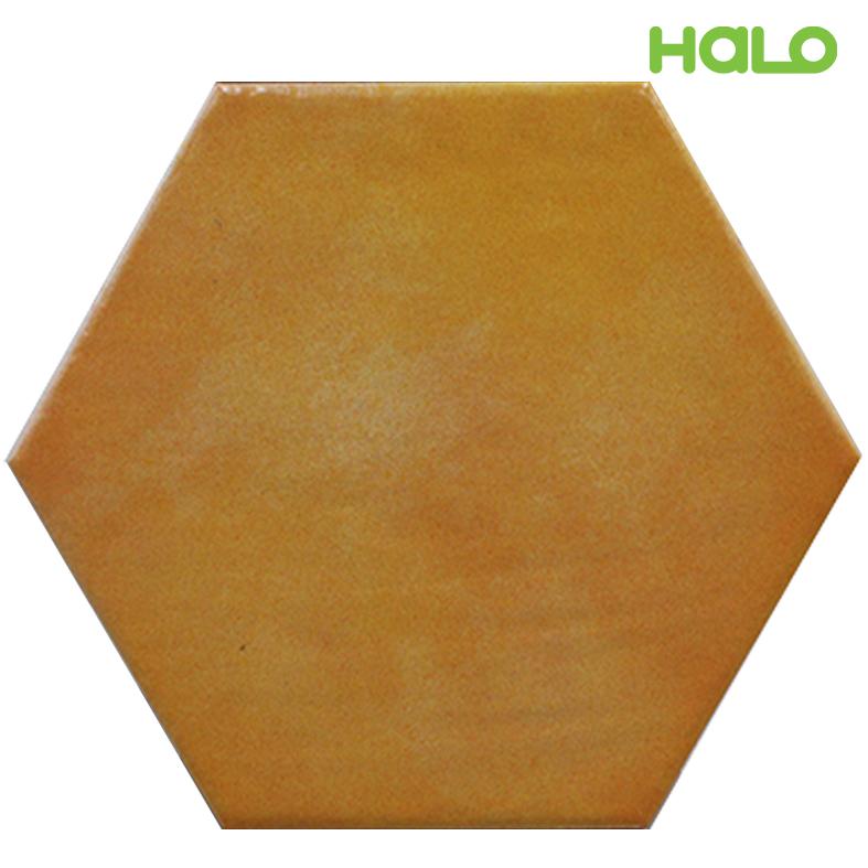 Gạch lục giác - TL120Y05