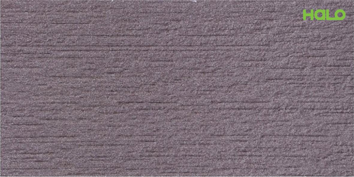 Gạch nhám - 01263