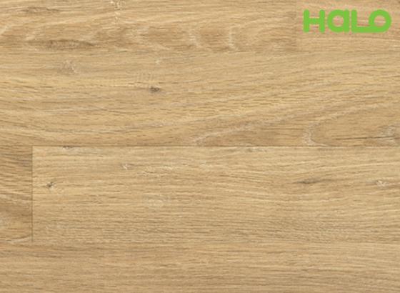Sàn gỗ công nghiệp Đức 051813-H1019