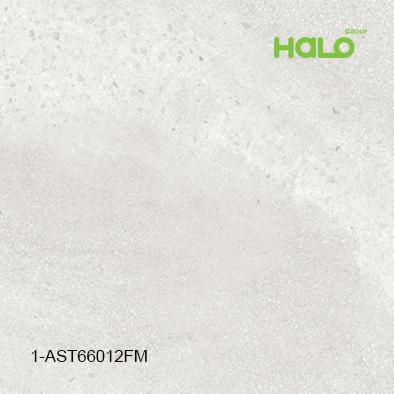Gạch mờ 1-AST6601