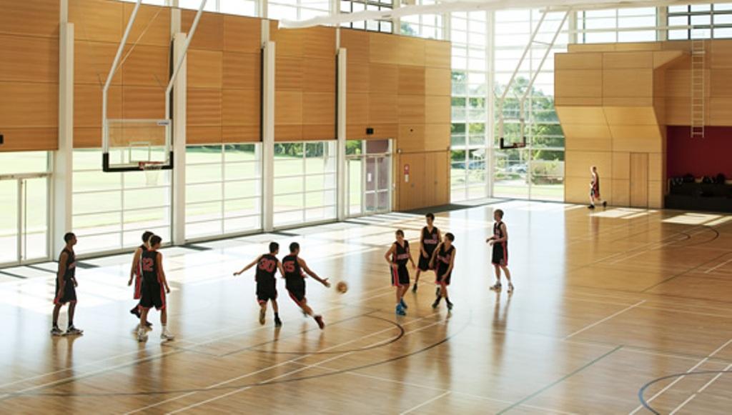 Sàn gỗ thể thao - WFS7