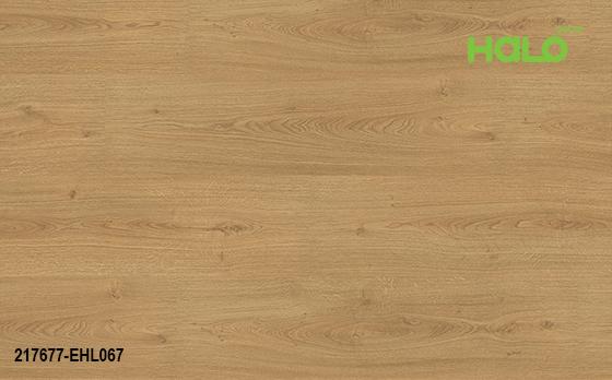 Ván sàn công nghiệp Đức - EHL065