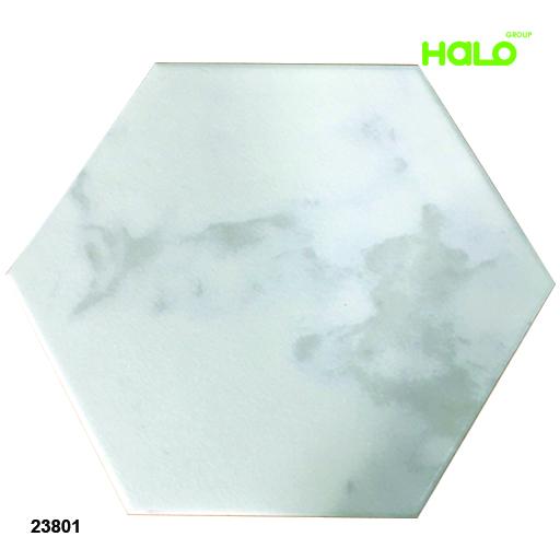 Gạch lục giác - 23801