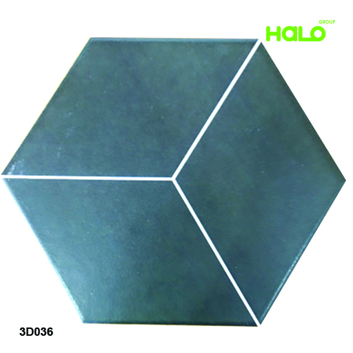 Gạch lục giác - 3D036