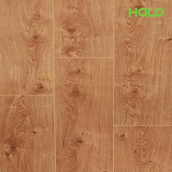 Sàn gỗ công nghiệp Bỉ - TRQ60437
