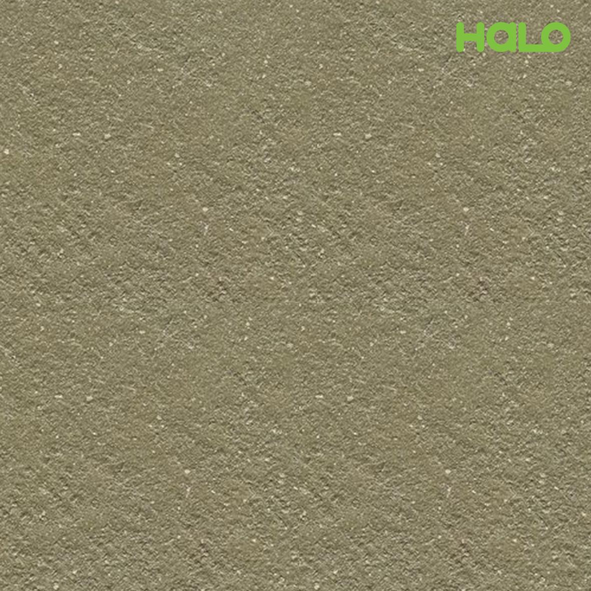 Gạch nhám - 66L-1003E