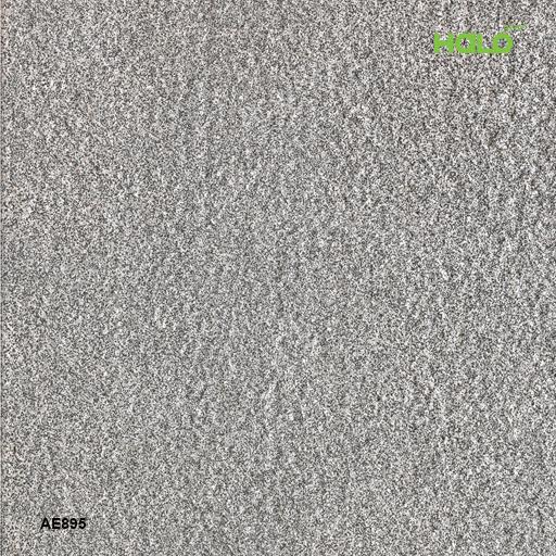 Gạch ngoài trời - AE895