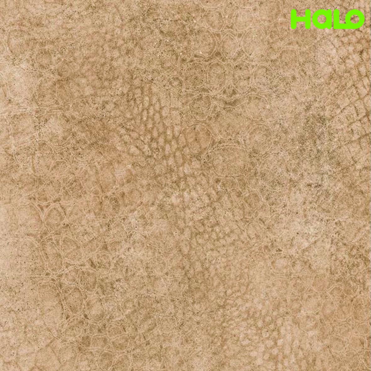 Gạch nhám - AS6003