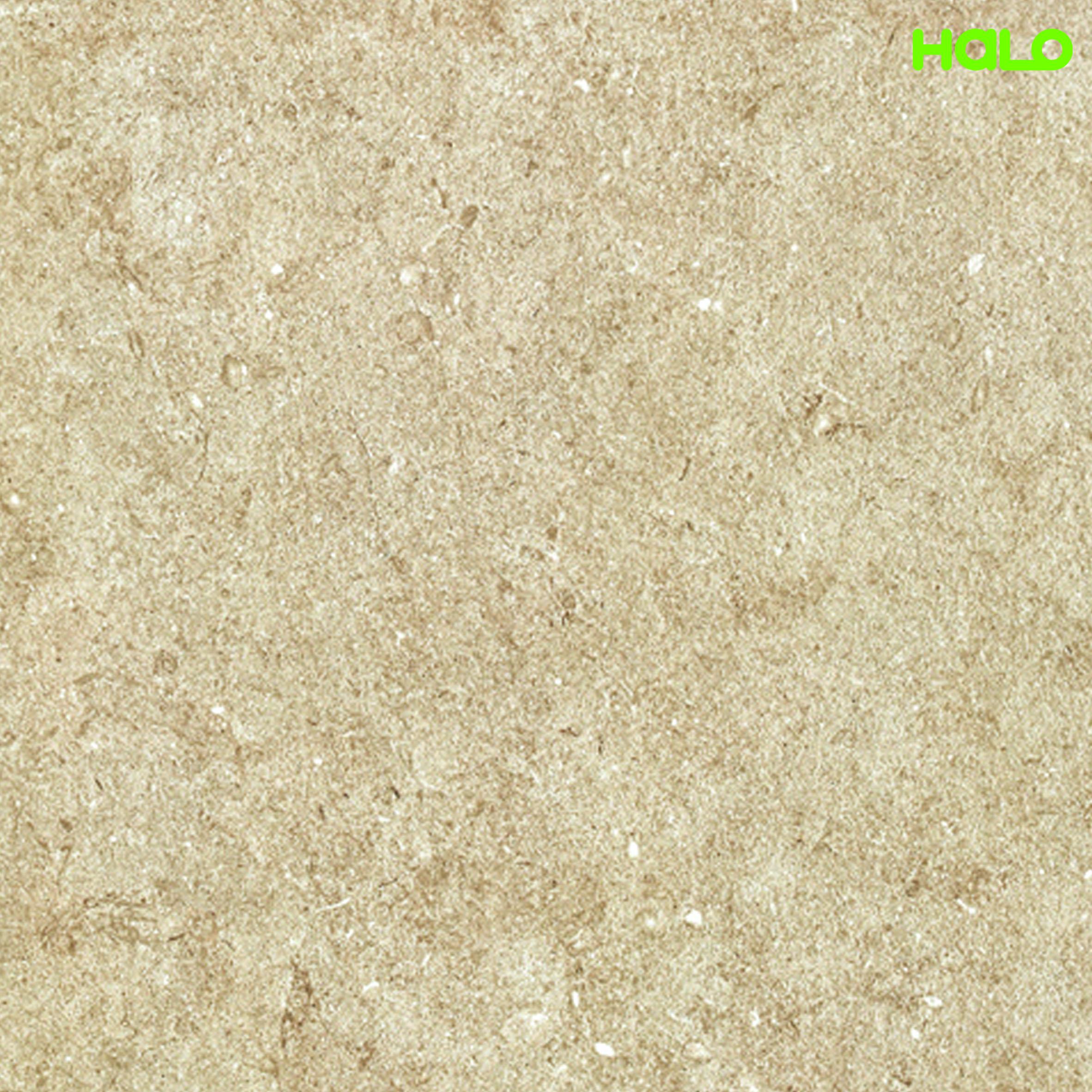 Gạch Nhám - CH6020R