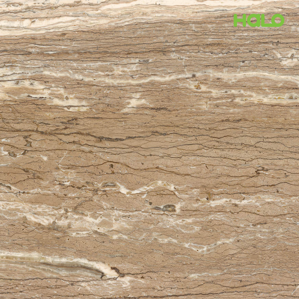 Đá marble nhân tạo - CT8003AS