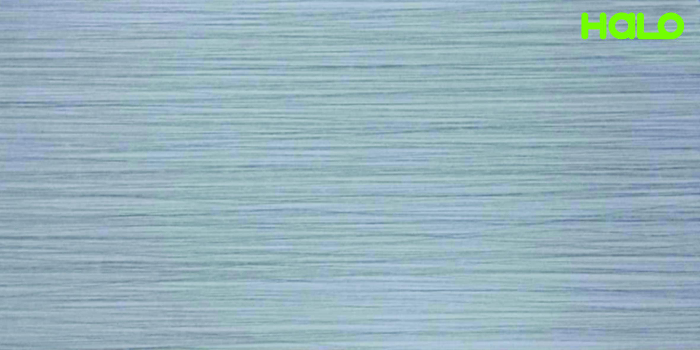 Gạch nhám - EV6316M