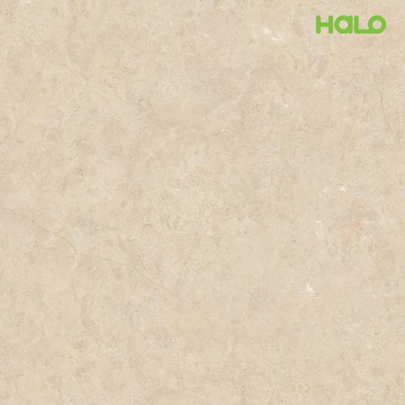 Đá marble nhân tạo - LT9022YS