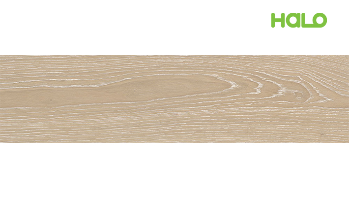 Gạch vân gỗ Ý - CP475091
