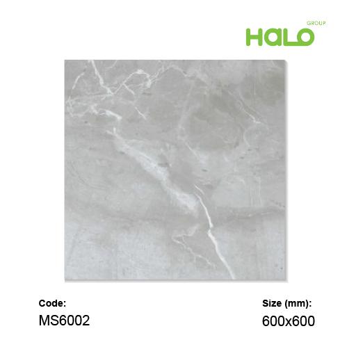 Gạch mờ - MS6001