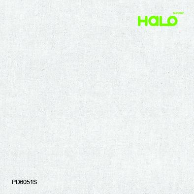 Gạch nhám - PD6051S