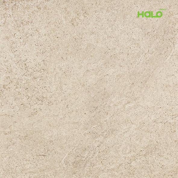 Gạch dày - RF2694A