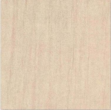 Gạch nhám - SP6004