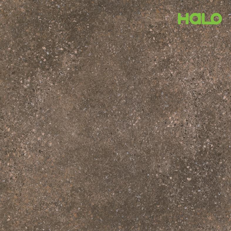 Gạch nhám - SSN6019BL