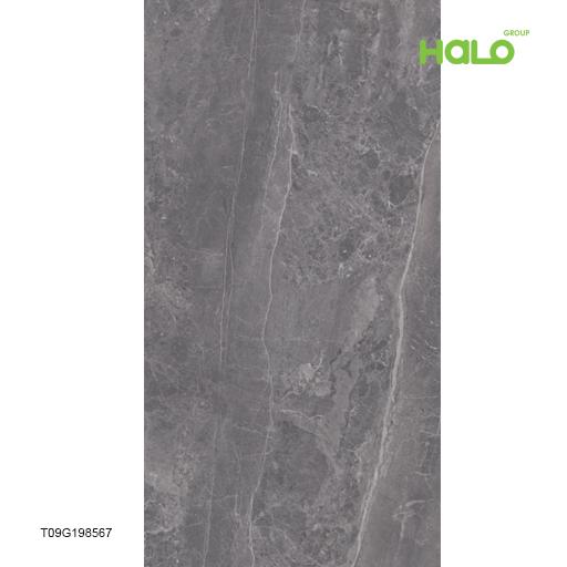 Gạch lọc không khí - T09G198565