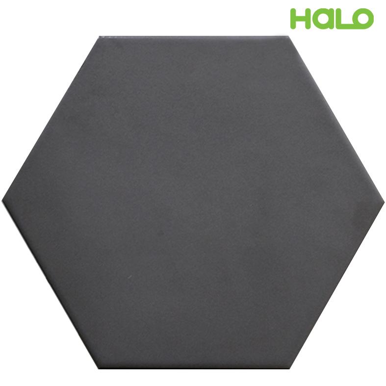 Gạch lục giác - TL120Y06
