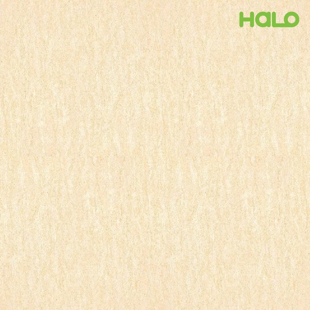 Gạch nhám - TMG06001