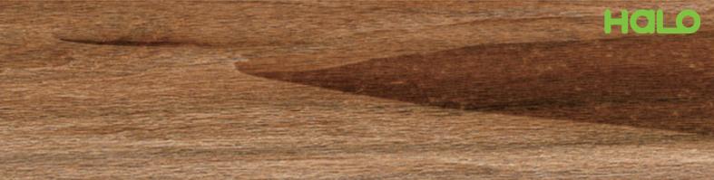 Gạch vân gỗ - TP615103