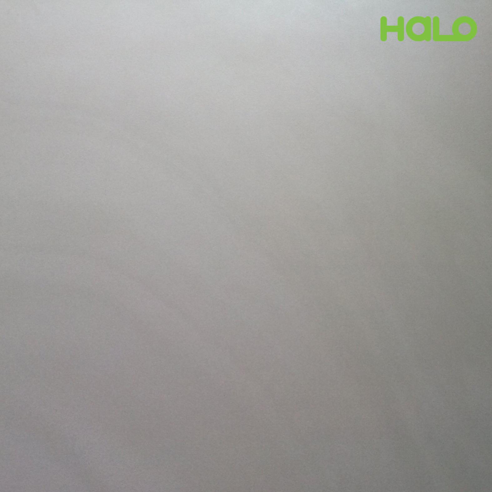 Gạch nhám - TPK60109M
